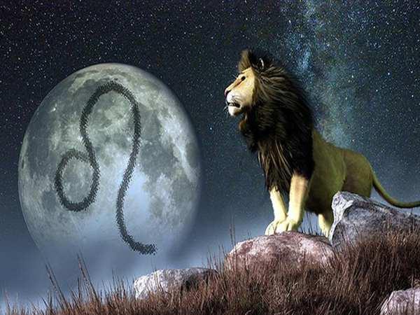Cung Sư Tử hợp với cung nào cho tình cảm thăng hoa?